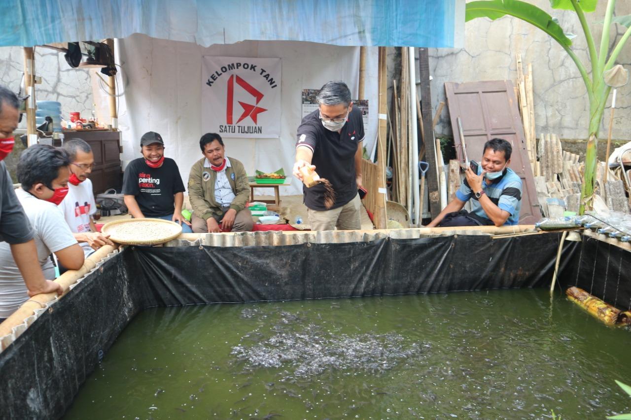 Kunjungan ke Tambak Lele Kelompok Tani Satu Tujuan di Cipayung